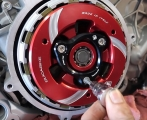 clutch pressure plate colored  Ducabike